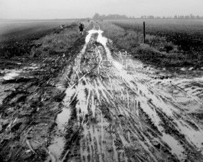 Mud, Ruts and Erosion