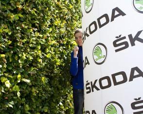 Hedges and Skoda