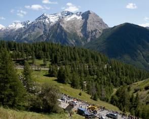 Alpen Vue