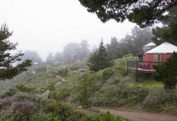 The Yurts of Treebones